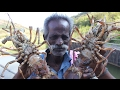 Download BIG LOBSTERS Prepared by my Daddy / VILLAGE FOOD FACTORY Video