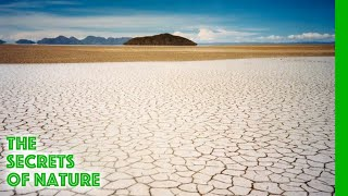 Download Salt, Tears of the Earth - The Secrets of Nature Video