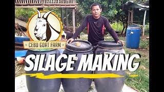 Download How do we make silage - Cebu Goat Farm Video