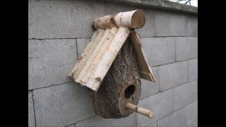 Download Making a DIY Birdhouse from a log Video