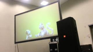 Download Puppet voice acting with the Mongrels Video