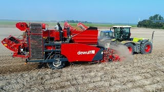Download Potato Harvest | Claas Xerion 3300 VC & Dewulf RA2060 Trailed 2-row Sieving Harvester | De Visser Video