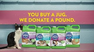 Download Cat's Pride®'s Litter for Good™ Helps More Cats Find Forever Homes! Video