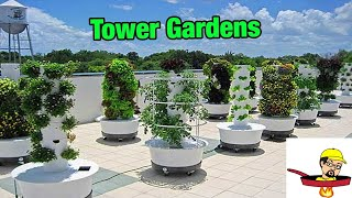 Download Tower Gardens - FOOD GARDENING Video