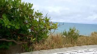 Download Passeio na Praia de Tambaba Litoral Sul Pb Video