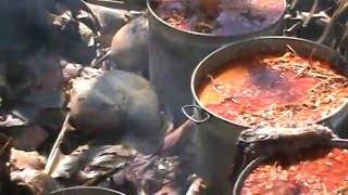 Download CHIVO AL HORNO COATECAS EJUTLA Video