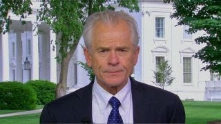Download Trump's steel, aluminum tariffs are about national security: Peter Navarro Video