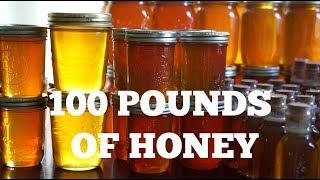 Download Honey Harvest Time! | S3 E14 Video