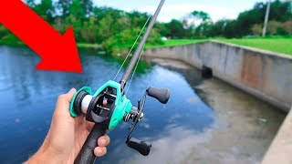 Download World's CHEAPEST Fishing Reel (WISH APP) Video
