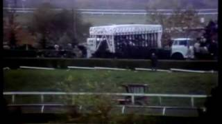 Download Secretariat's Last Race Video