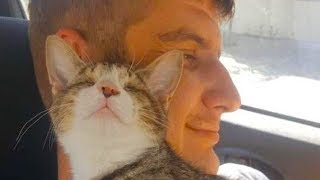 Download Blind Kitten Immediately Falls In Love With The Man Who Saved Her Video