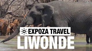 Download Liwonde National Park (Malawi) Vacation Travel Video Guide Video