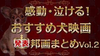 Download 感動・泣ける!おすすめ犬映画まとめVol.2(邦画・日本) Video