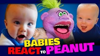 Download BABIES REACT to PEANUT | JEFF DUNHAM Video