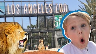 Download Our Fun, Family Trip to the Los Angeles Zoo!!! Video