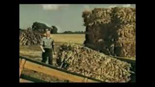 Download American Farmer Movie - 1953, Blazey Family | Ford Motor Company Video
