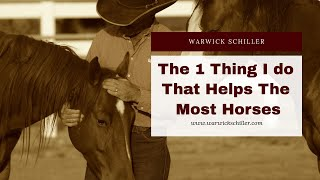 Download The one thing I do that helps the most horses Video
