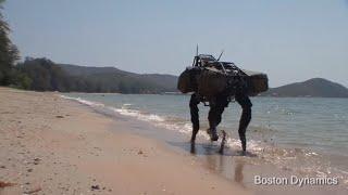 Download BigDog Beach'n Video