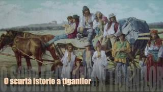 Download O scurta istorie a tiganilor Video