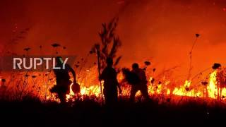 Download Chile: At least ten dead as devastating wildfire rips through central Chile Video