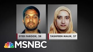Download Who Was Tashfeen Malik? | All In | MSNBC Video
