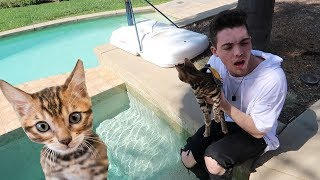 Download FaZe Adapt Tries to Take Care of a Cat.. (Part 2) Video