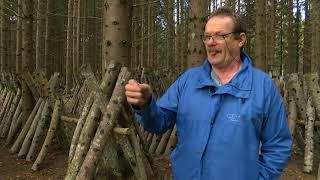 Download Tā dzīvojam. Šitaki sēņu audzetājs - Imants Urpens (05.10.2019.) Video