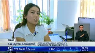 Download Трехступенчатая система отбора на госслужбу внедрена в Таразе Video