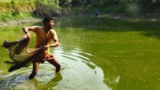 Download Net Fishing | Catching Fish With Cast Net | Net Fishing in the village (Part-119) Video