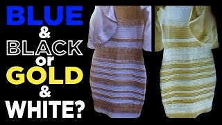 Download What color is THE DRESS?? Blue & Black or White & Gold?? #TheDress Video
