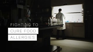 Download Fighting to Cure Food Allergies Video