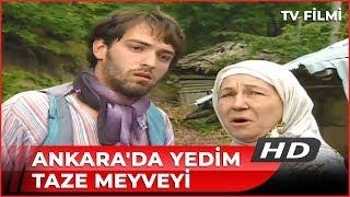 Download Ankara'da Yedim Taze Meyveyi - Kanal 7 Filmi Video