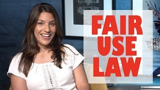 Download Stealing photos is LEGAL? Fair Use Law in Action Video