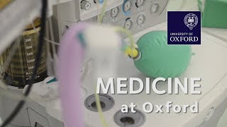 Download Medicine at Oxford University Video
