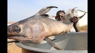 Download BIG Full FISH Gravy / Village food factory DADDY Video