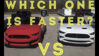 Download Shelby GT350R vs 2018 GT At The Strip! Video