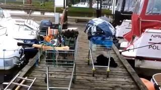 Download BUGIEM-NARWIĄ-PISĄ DO GIŻYCKA Video
