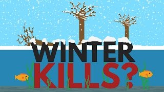 Download Why Doesn't Winter Kill All The Fish And Plants? Video