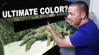 Download HOW TO increase fish coloration - with sun tanning? Video