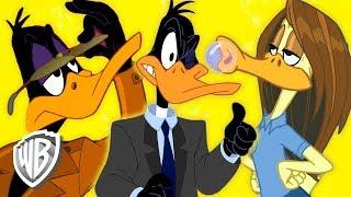 Download Looney Tunes en Español Latino America | Las Múltiples Facetas del Pato Lucas | WB Kids Video