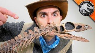 Download Jurassic World Explorers: The First Dinosaur?   Jurassic World Video