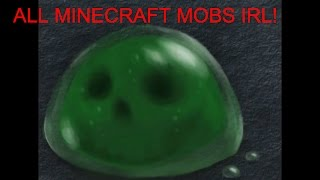 Download All Minecraft Mobs in Real Life! Video