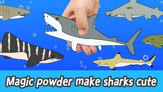 Download [EN] Magic powder make sharks cute! animals names for kids, coco animal animation, collectaㅣCoCosToy Video