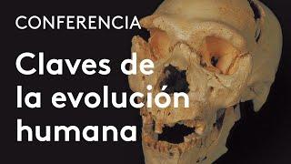 Download Claves biológicas y culturales de la evolución humana Video