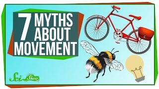 Download 7 Myths About Movement Video