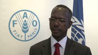 Download Interview with Faisal Hassan Ibrahim Minister for Livestock, Fisheries and Rangelands of Sudan Video