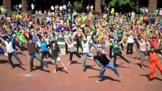 Download Harding University Spring Sing Flash Mob Video