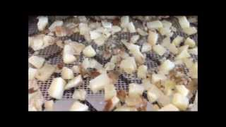 Download Dehydrating Potatoes for Prepper's Food Storage Using Excalibur Dehydrator :) Video