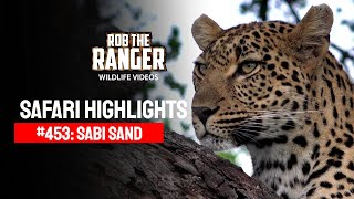 Download Idube Safari Highlights #453: 13 - 19 January 2017 (Latest Sightings) (4K Video) Video