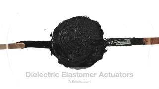Download The Basics of Dielectric Elastomers Video